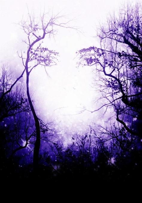 ramona_scheat_1_by_phoenics1-d70scki