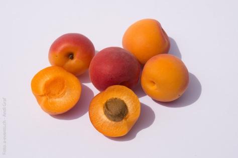 fruits-374749